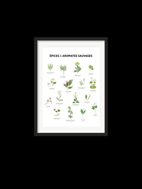 Affiche – Épices sauvages