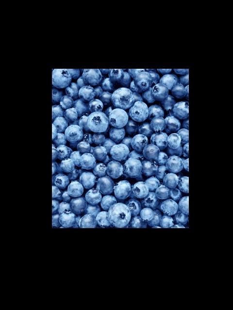 Frozen wild blueberries 2 kg