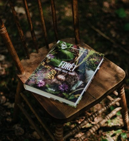 Livre Forêt, identifier, cueillir, cuisiner.