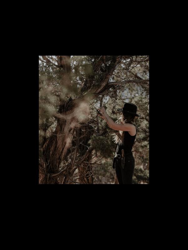 Ensemble Bivouac – outils de cueillette